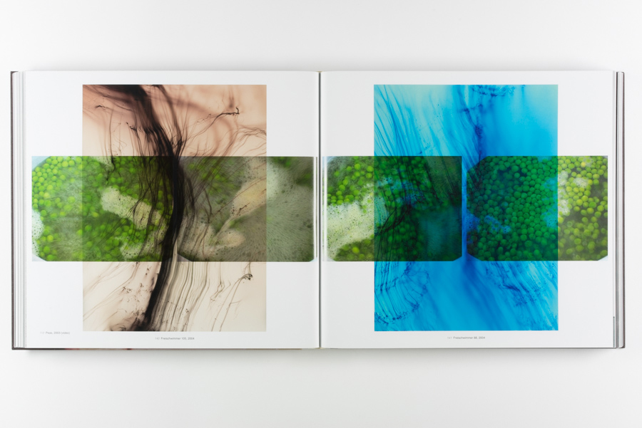 <i>Abstract Pictures</i> (Collector's Edition), 2011
